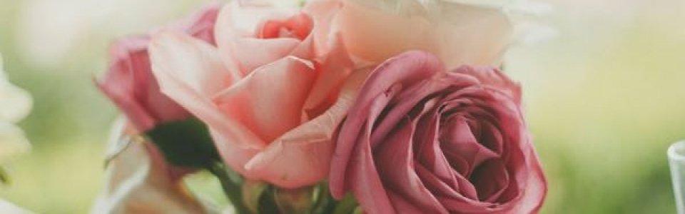 roses-983972-960x300_c